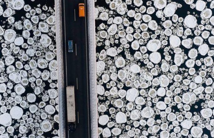 10 Макрофото, открывающих невидимый мир