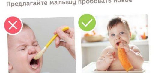 5-samyh-chasto-vstrechajushhihsja-voprosov-kak_1.jpg