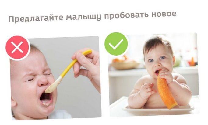 5 Самых часто встречающихся вопросов, как правильно кормить детей