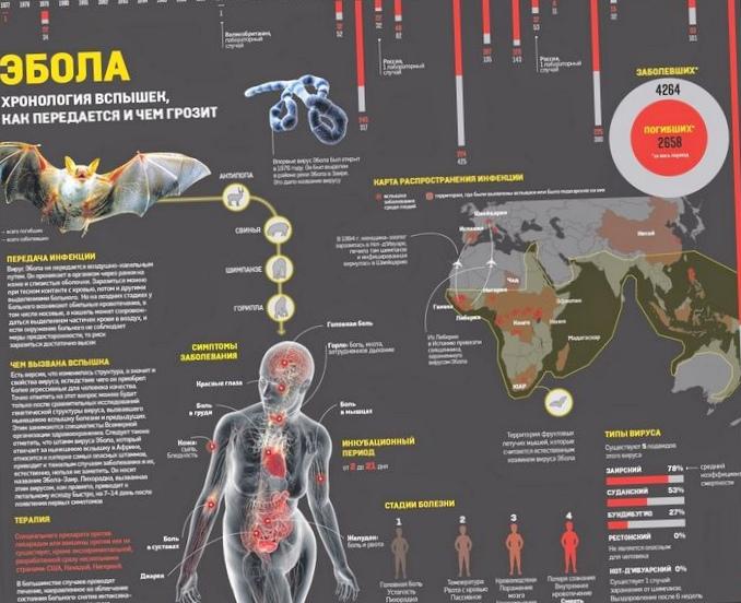5 Вирусов опаснее, чем эбола