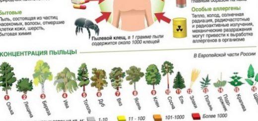 allergija-chto-takoe-polozhitelnaja-provokacija_1.jpg