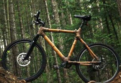 bambukovyj-velosiped-rulit_1.jpg