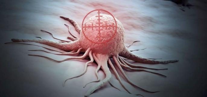 Биспецифические антитела могут уничтожать скрытые резервуары вич-инфекции