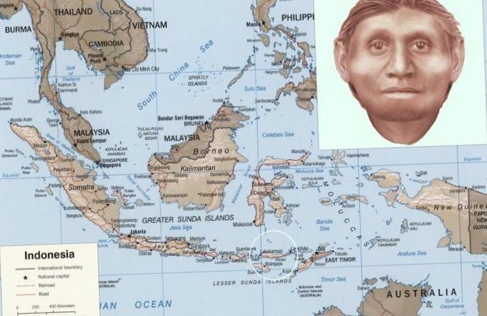 Чем денисовский человек отличается отhomo sapiens?