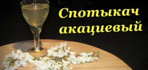 domashnee-vino-iz-cvetov-akacii_1.jpg