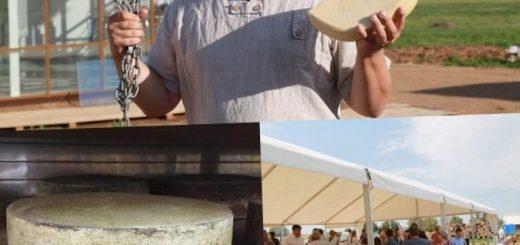 festival-fermerskogo-syra-v-podmoskove_1.jpg