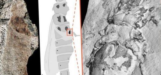 fiziki-pri-pomoshhi-rentgena-poluchili-trehmernuju_1.jpg