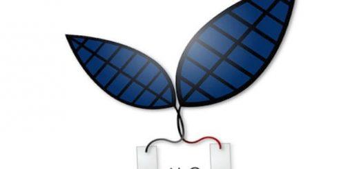 fotosintez-bionicheskogo-lista-teper-v-10-raz_3.jpg