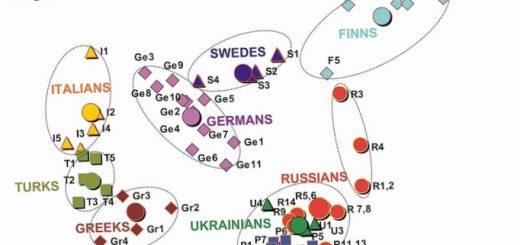 geneticheskie-razlichija-mezhdu-rasami-mif-ili_1.jpg