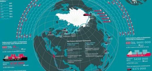 god-arktiki-v-rossii-dan-vremeni-ili-osoznannaja_1.jpg