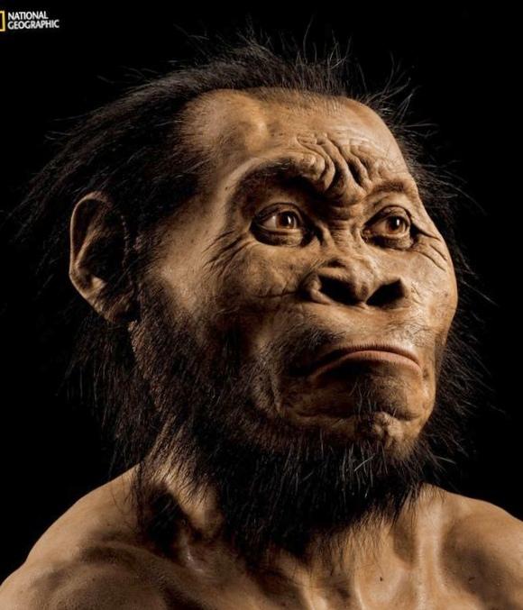 Homo naledi: найден новый вид предков человека