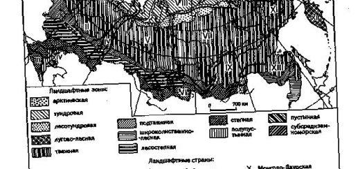 ierarhija-regionalnyh-geosistem-differenciacija_1.jpg