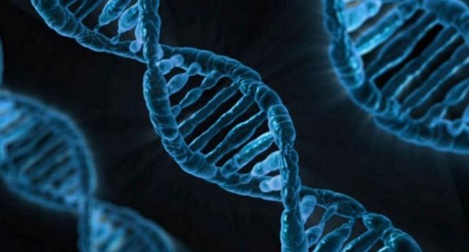 Искусственно созданная форма жизни озадачила ученых