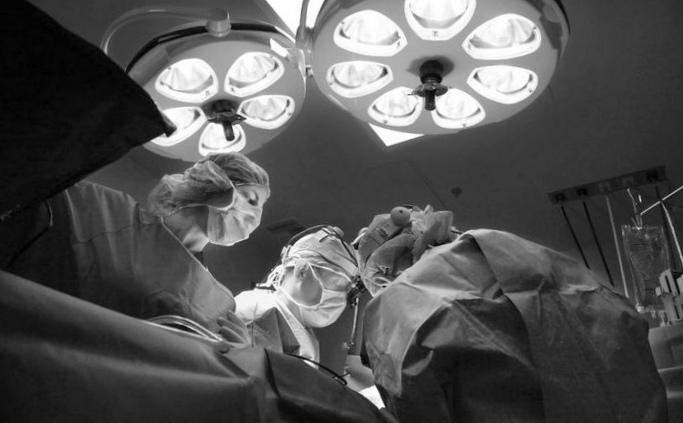 Искусственные органы спасут от опытов над животными