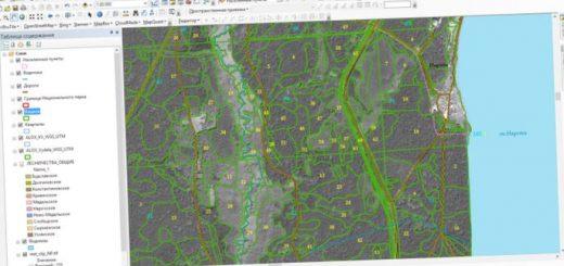 ispolzovanie-kosmicheskogo-monitoringa-i_4.jpg