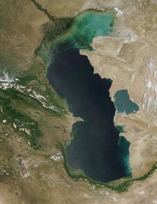 Экология каспийского моря: мнения экспертов