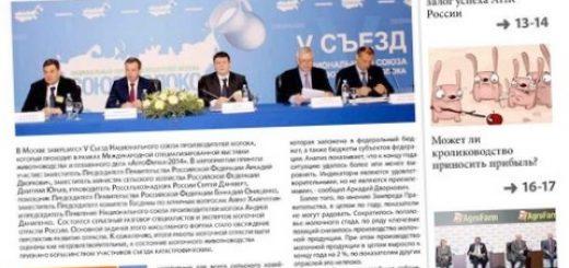 jeksperty-ocenili-sostojanie-ozimyh-v-belgorodskoj_1.jpg