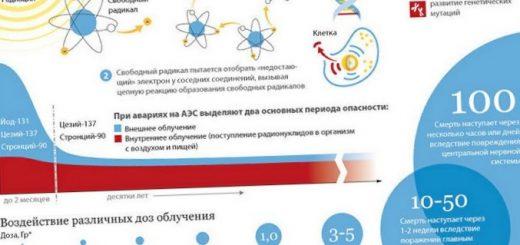 kak-vyvesti-iz-organizma-radioaktivnye-jelementy_1.jpg