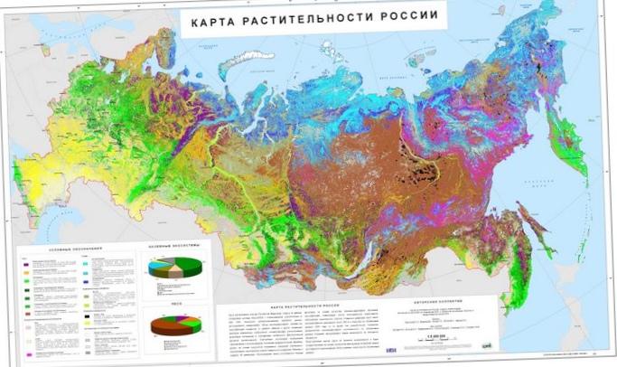 Классификация карт. принципы классификации