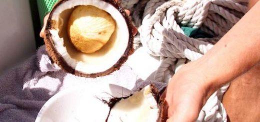 kokosovyj-oreh-pomozhet-hranit-vodorod-jeffektivno_1.jpg