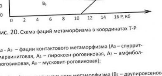 koncentracija-metallov-v-organizmah-i-biogennoe_1.jpg