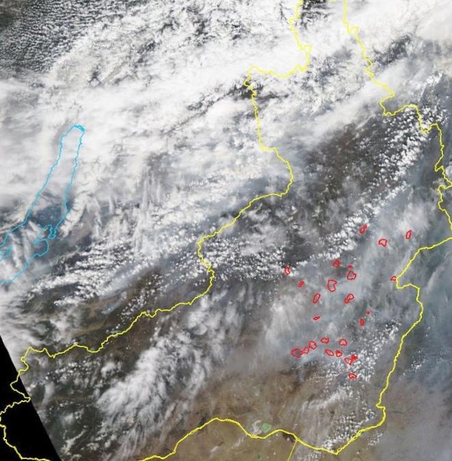 «Космоснимки – пожары» – мониторинг природных пожаров