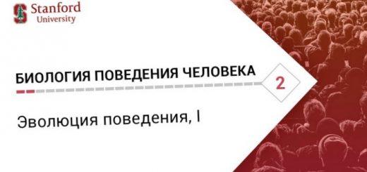 matematika-biologicheskih-perekljuchatelej_1.jpg