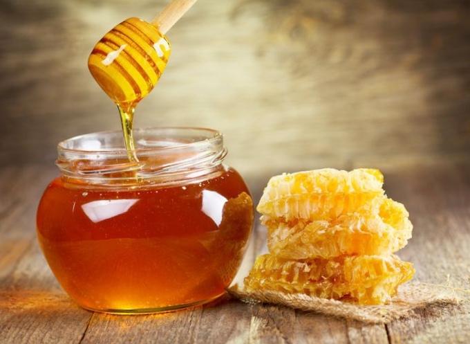 Мед уничтожает бактерии, устойчивые кантибиотикам
