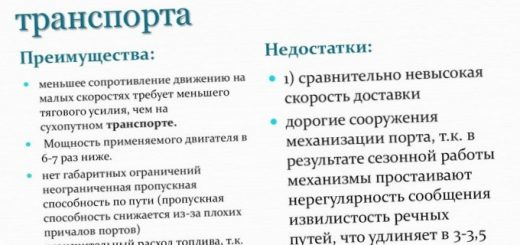 mesta-otdelnyh-vidov-transporta-po-gruzooborotu_1.jpg