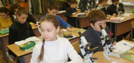 ministr-obrazovanija-i-nauki-rossijskoj-federacii_1.jpg