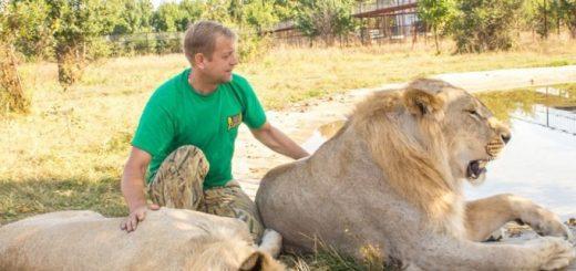 park-lvov-tajgan-belogorsk-krym-taygan-lions-park_1.jpg