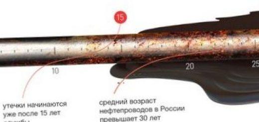 posledstvija-neftjanyh-razlivov-v-rossii_1.jpg