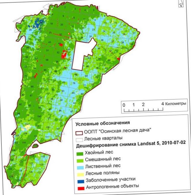 Применение дистанционного зондирования при мониторинге лесов
