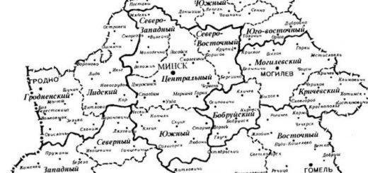 princip-jekonomicheskogo-rajonirovanija-tipy-i_2.jpg