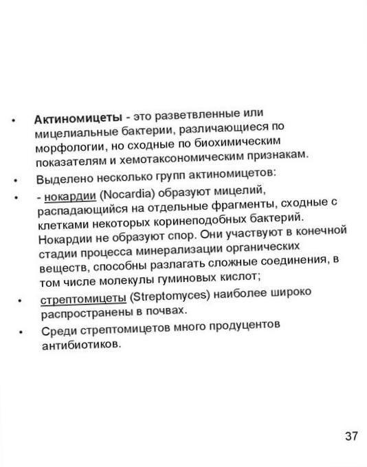 razlozhenie-organicheskih-veshhestv-v-landshafte_2.jpg