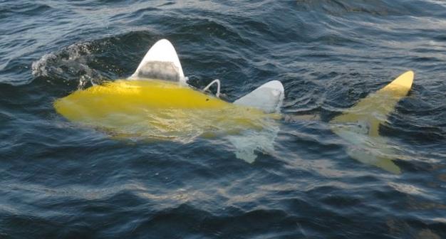 Рыба-робот контролирует состояние окружающей среды