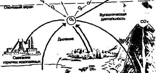 sopostavlenie-biologicheskogo-krugovorota-i_1.jpg
