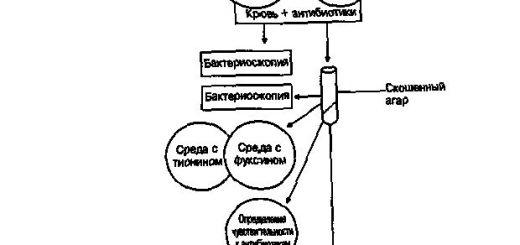 specialnaja-pljonka-zashhitit-ot-opasnyh-ranevyh_1.jpg