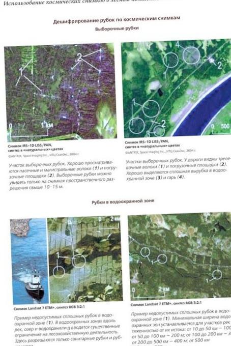 Технология мониторинга вырубок леса с использованием космических снимков высокого пространственного разрешения