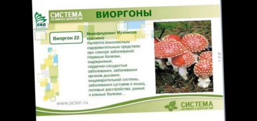 uchenye-otkryli-sposob-lechenija-gluhoty_1.jpg