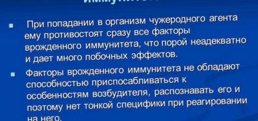 uchenye-predpolozhili-chto-medlennyj-son_1.jpg