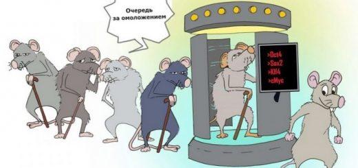 uchenye-prevratili-kletki-kozhi-v-kletki_1.jpg