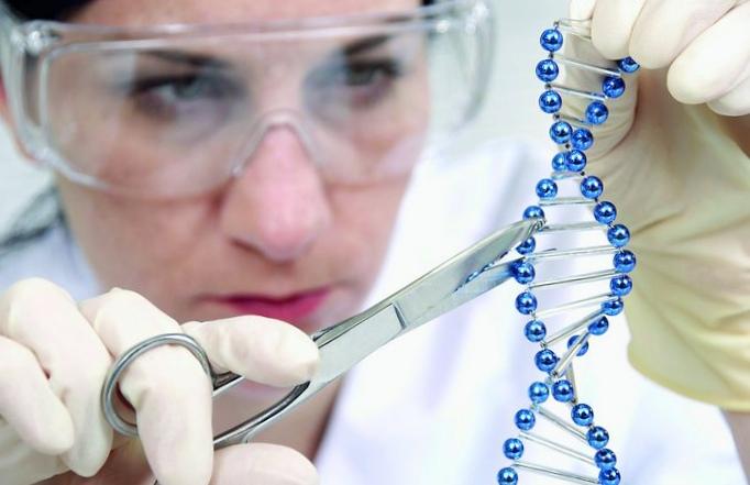 Ученые работают над созданием элементов крови