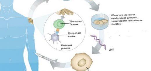 uchenye-sozdali-geneticheskuju-vakcinu-ot-kurenija_1.jpg