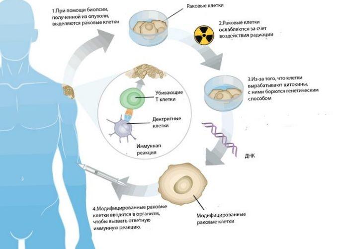 Ученые создали генетическую вакцину от курения