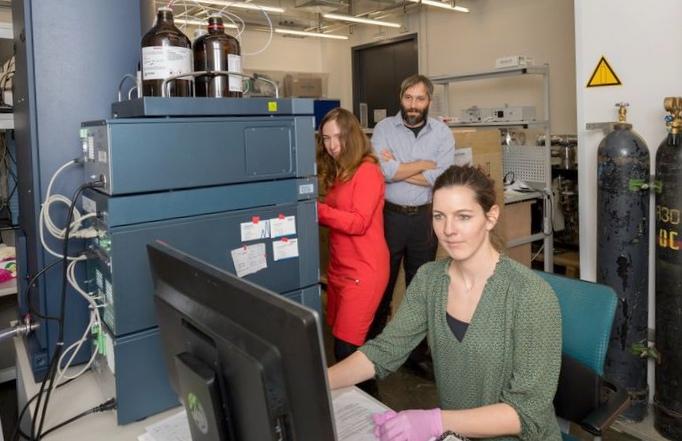 Углеродные нанотрубки проходят сквозь клеточные стены