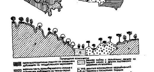 vertikalnaja-struktura-geosistemy_2.jpg