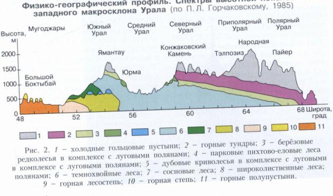 Вертикальная (высотная) поясность