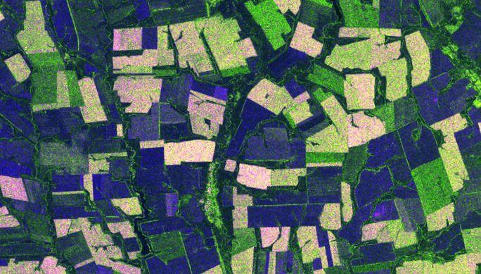 Возможности радарных снимков sentinel-1 для решения задач сельского хозяйства
